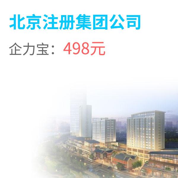02北京注册集团公司.jpg