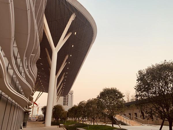 已经落成的深圳国际会展中心雄姿.jpg