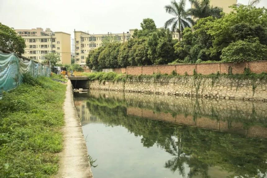 茅洲河.jpg