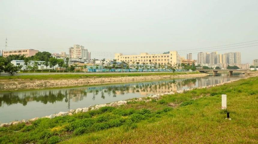 今天的沙井河.jpg