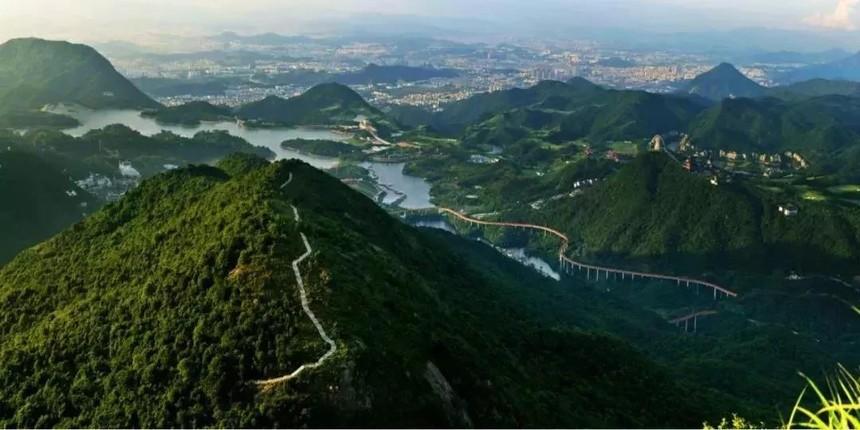 深圳的绿化率高.jpg