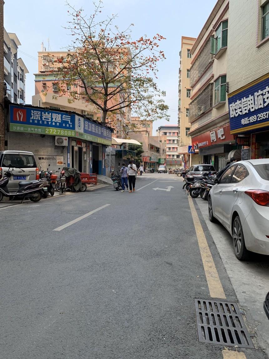 泰富华庭楼下的街道.jpg