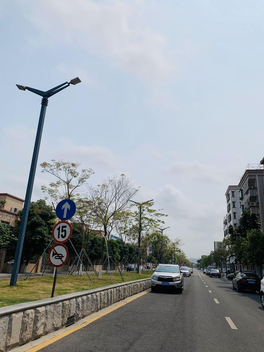泰富华庭附近的道路.jpg