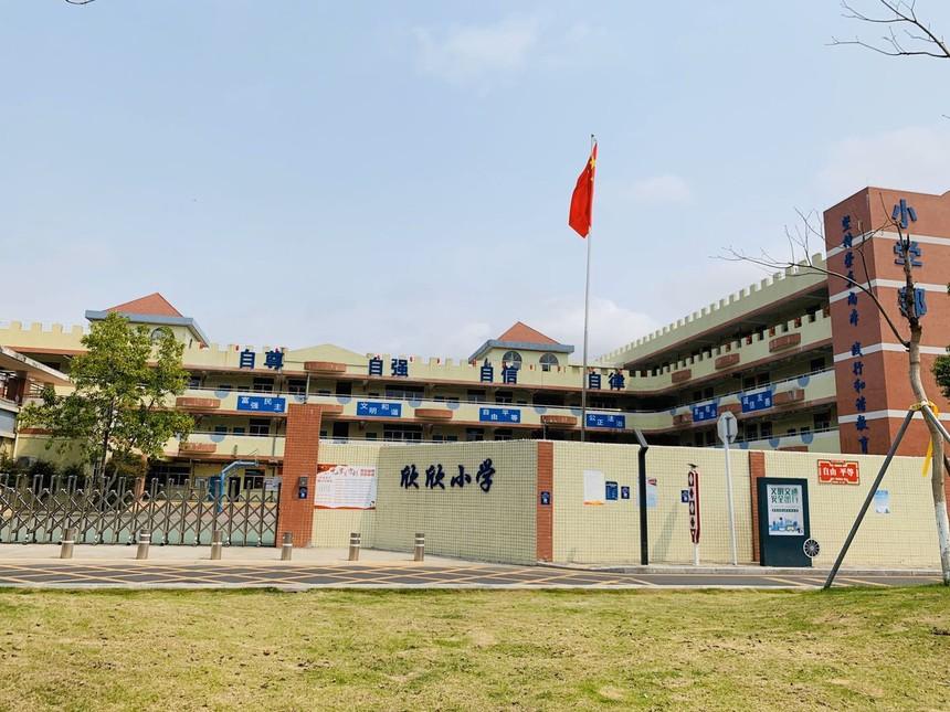泰富华庭附近的欣欣小学.jpg