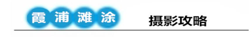 QQ浏览器截图20190614205956.png