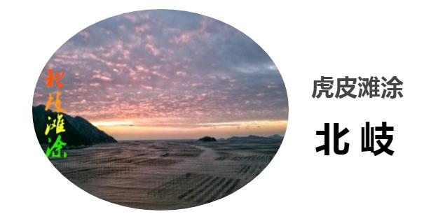 QQ浏览器截图20190614205558.png