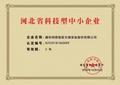 """科德智能获得""""河北省科技型中小企业"""" 证书"""