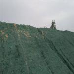 环保抑尘剂应用领域