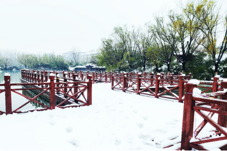 绝美,信息工程大学迎来2021年的第一场雪!157.png
