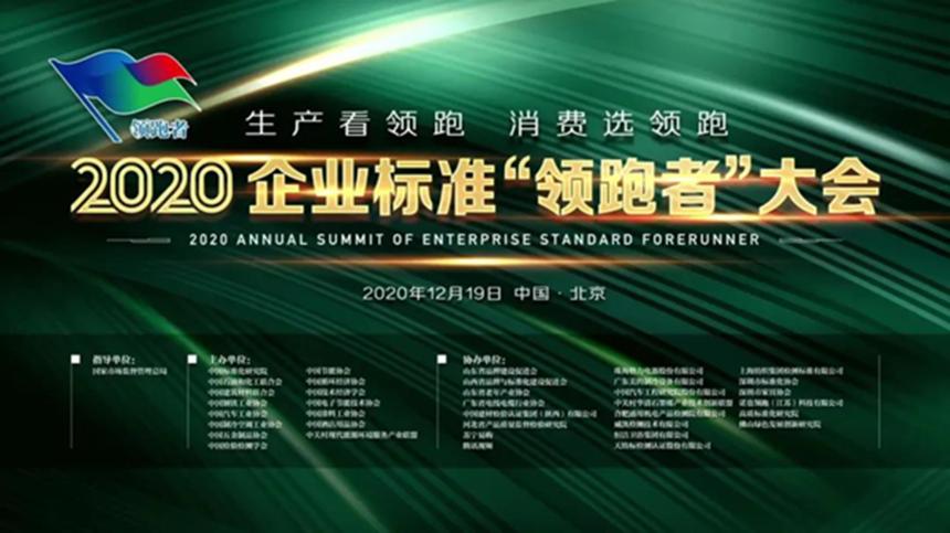 企业标准领跑者_外网.png