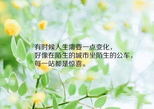 tim_看图王.jpg