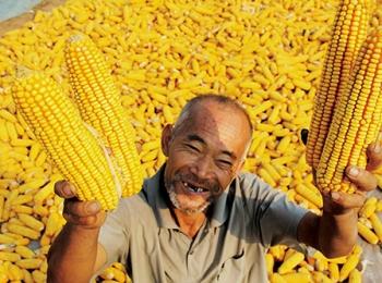 胡德平:市场经济下的合作经济(中) ——延安的成功实践及对今天改革的参考意义