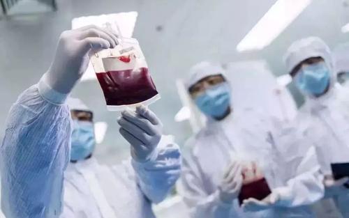 脐带血存储