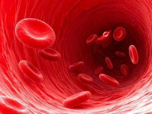 湖南干细胞存储