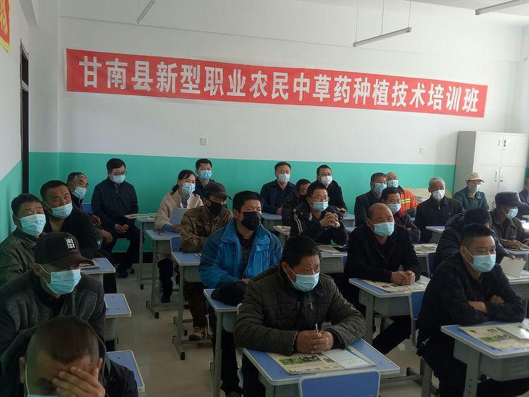 甘南县中草药种植技术培训570.png