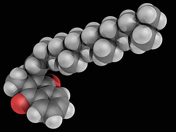 碳原子排列.jpg