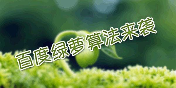 网站优化经验之谈:百度绿萝算法是怎么一回事?