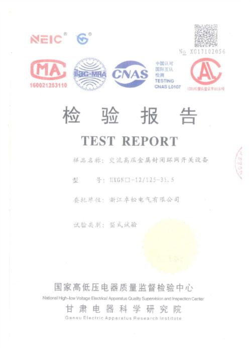 49-HXGN口-12-125-31.5-检验报告.jpg