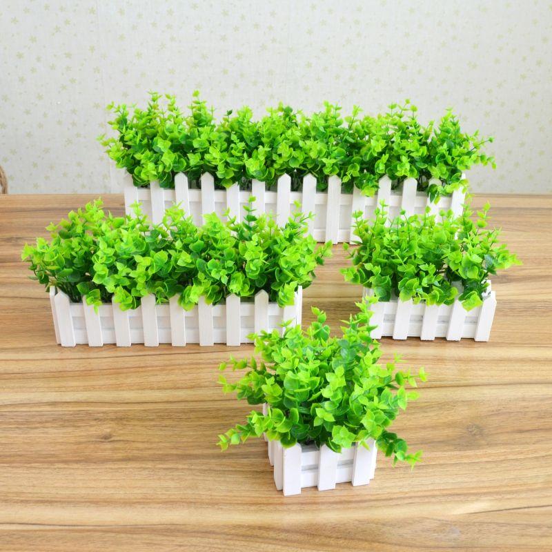 植物租赁的好处
