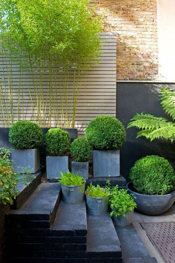 杭州七木白植物租赁