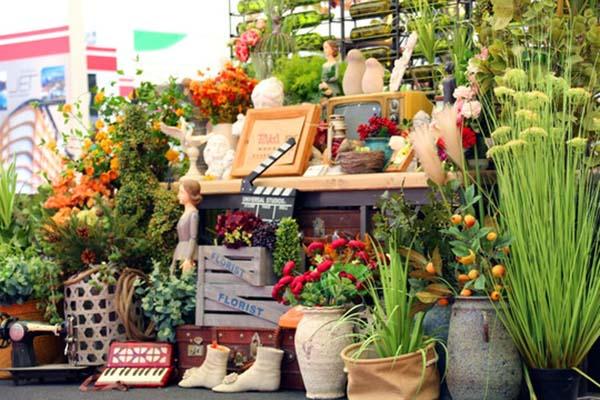杭州植物租摆养护标准有哪些