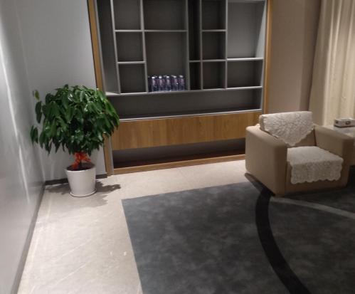 杭州室内植物租赁
