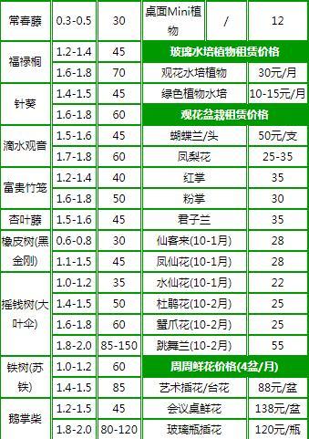 杭州绿植租赁报价表