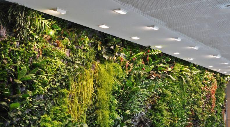 仿真植物墙定制