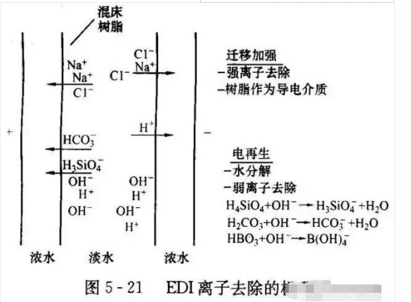 EDI水处理设备离子去除机理图