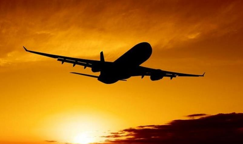 宠物空运如何包装?空运包装箱要求