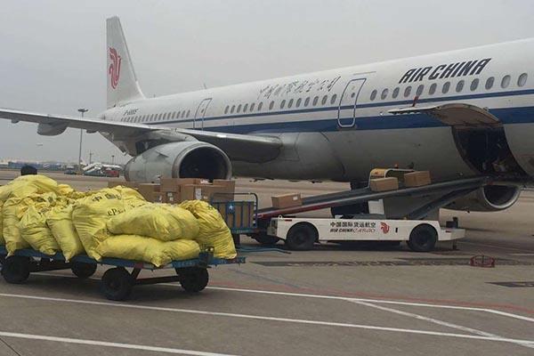 杭州机场航空货运