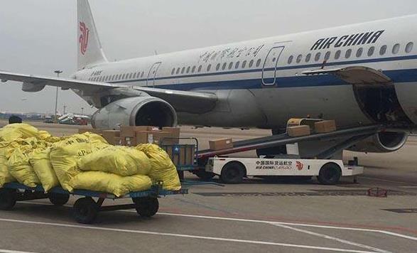 天津航空快递
