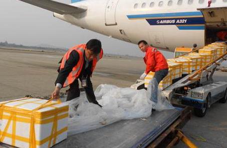 天津航空货运,天津航空货运服务质量标准,天津空运企业
