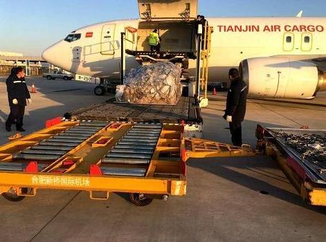 天津航空货运的运输过程中的规定