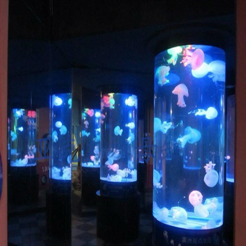 水母观赏鱼缸定制