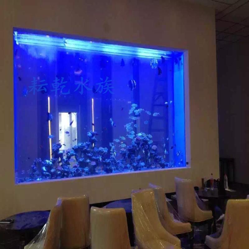 亚克力鱼缸制作,定制亚克力鱼缸,就找上海耘乾水族