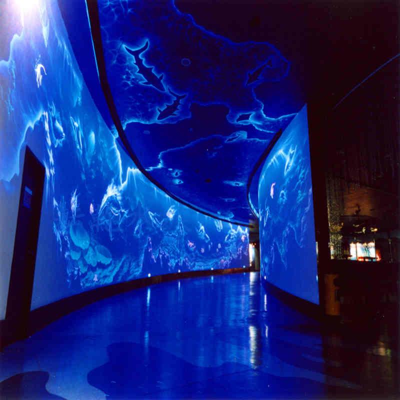 大型亚克力鱼缸定制,海洋馆建设,海底餐厅亚克力板材定制13162356777