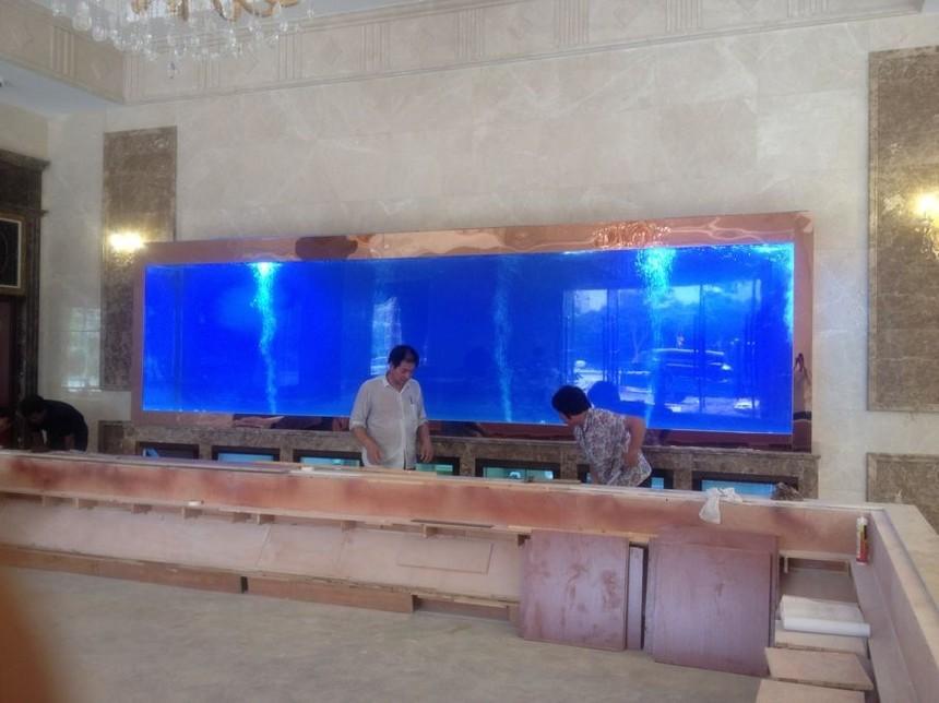 大型亚克力鱼缸定做就找上海耘乾水族工程有限公司咨询13162356777
