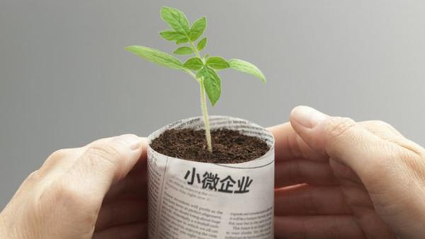 小微企业是什么