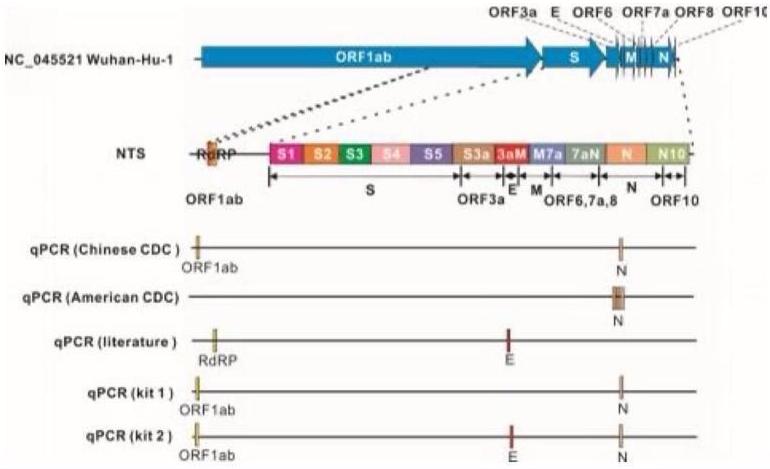 NTS与qPCR方法对比