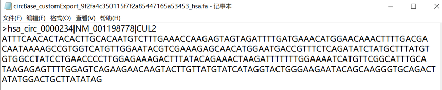 环状RNA