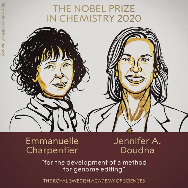 诺贝尔化学奖