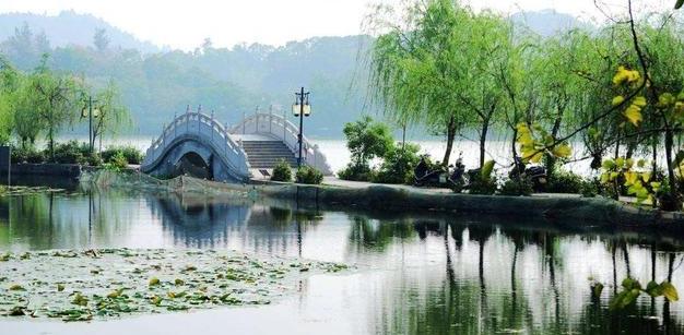 杭州怎么注冊公司,杭州怎么辦理營業執照