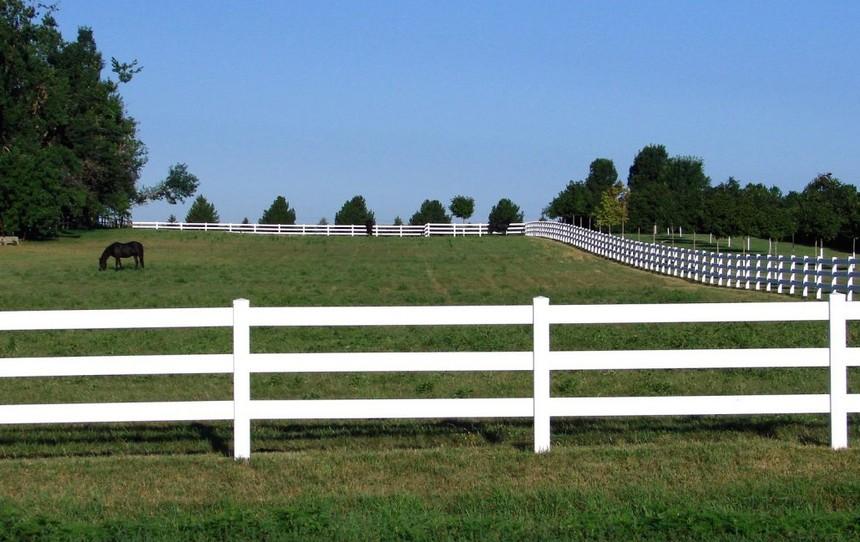 马场围栏10.jpg
