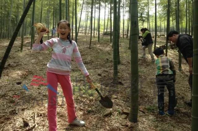 假期父母为中小学生选择夏令营的原因