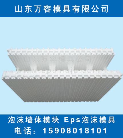EPS模具 泡沫墙体模块.jpg