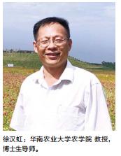 2019年年刊31页徐汉虹:华南大学农学院 教授、博士生导师图片.png