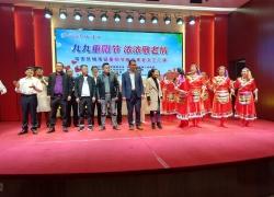 裕安区城南镇开展重阳节文艺汇演活动