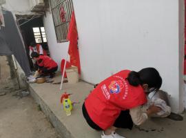 开发区妇联巾帼志愿服务队开展多种形式爱国卫生运动