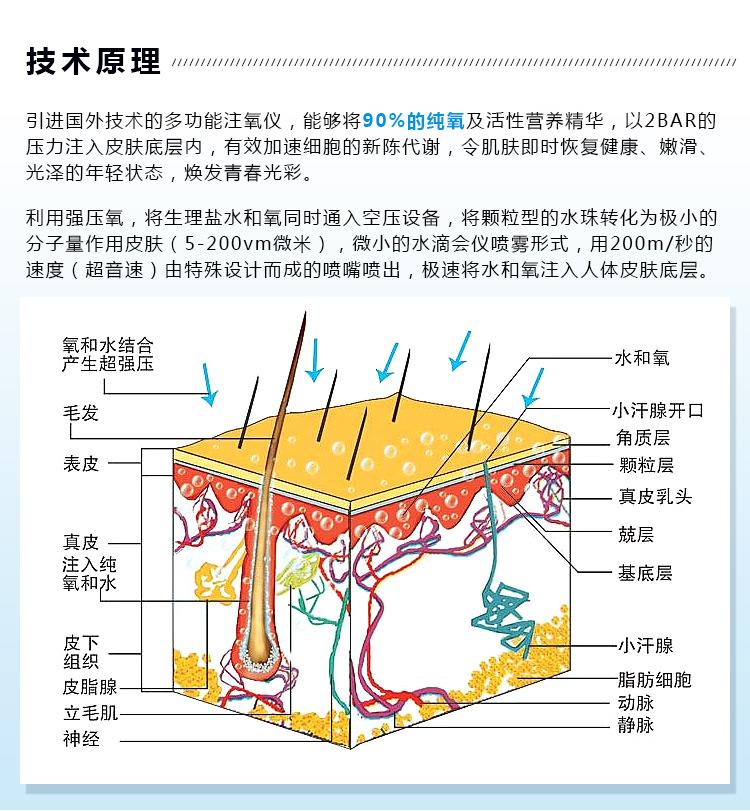 双屏水氧技术原理_02.jpg